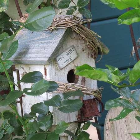 Es grünt und blüht in meinem alten Garten…