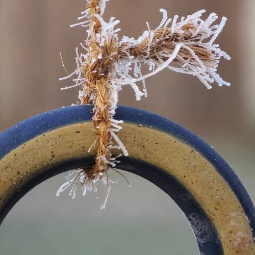 Im Winterwunderland…. Luzia Pimpinella