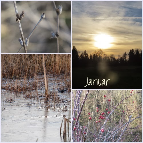 Januar Collage…. BIWYFI
