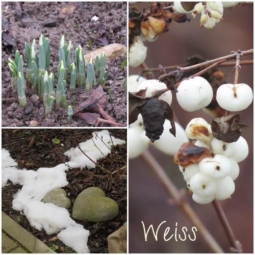 Februar Farbpalette: weiß … BIWYFI
