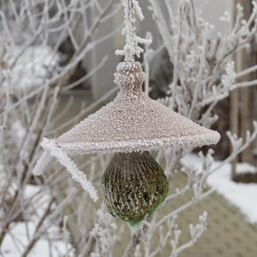 Und nochmal Frost…